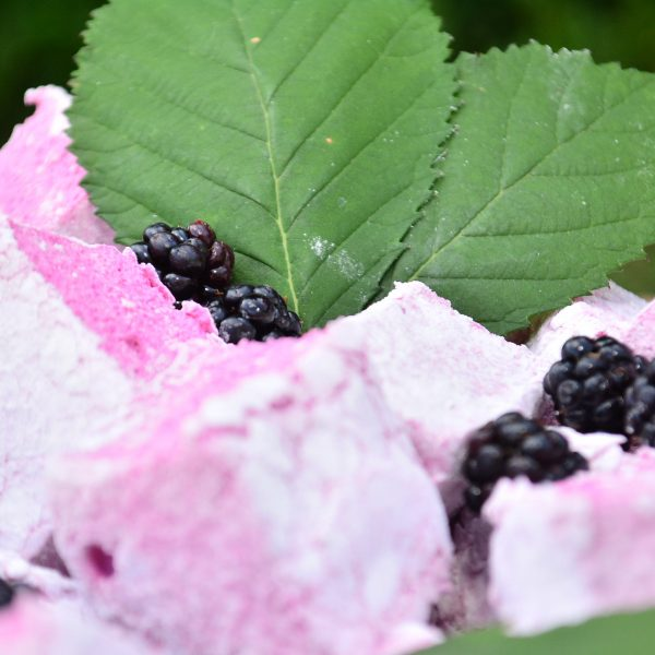 Closeup picture of purple marshmallows with blackberries and bramble leaves